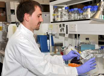 Photograph of a scientist working in the lab