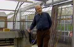 Video: Dr Gavin Ramsay, Curator of the Commonwealth Potato Collection which…