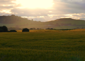 climate change hutton agriculture