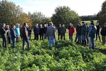 Plant Teams events look at growing multiple crops together for better outcomes