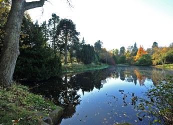Craigiebuckler pond, Aberdeen (c) James Hutton Institute