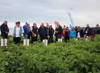 Presentation at Potatoes in Practice 2017 (c) James Hutton Institute