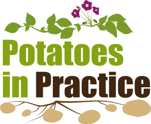 Potatoes in Practice