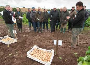 Photograph of visitors touring field plots at Potatoes in Practice 2011