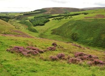 Glensaugh is located in the Scottish uplands