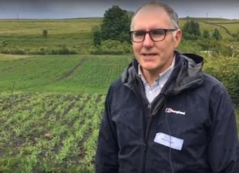 Crofter Mike Hyatt and his intercropping trial in Lismore