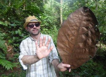 Dr Tim George, UK coordinator of Fascination of Plants Day (c) James Hutton Inst
