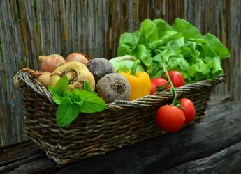 A basket of vegetables (Image by congerdesign from Pixabay)