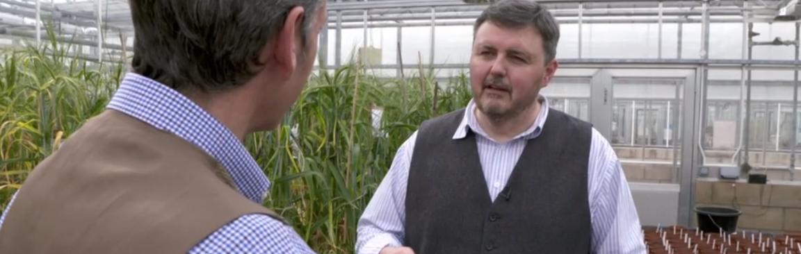 Professor Derek Stewart interviewed for BBC Landward