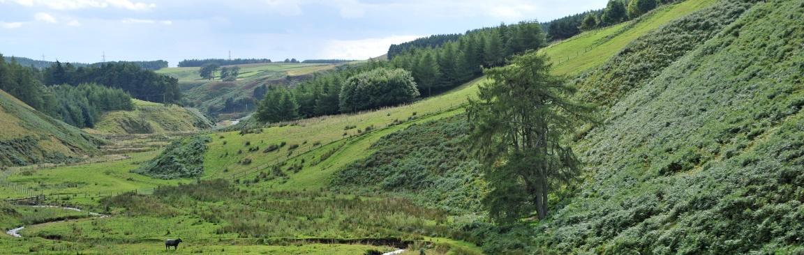 Glensaugh landscape (c) James Hutton Institute