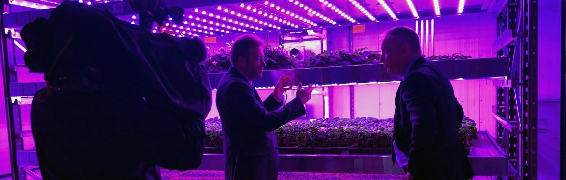 Mr Lochhead visited the vertical farm built by IGS at our Dundee site