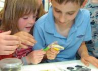 Photograph of children using magnifying glasses to look at mini-beasts