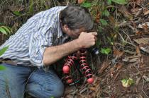 Ole Pedersen photographing a Russula sp.
