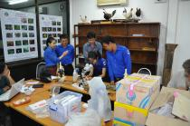 Staff at BEI sorting and examining the collections