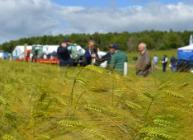 Arable Scotland 2020 is taking place online