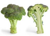 Broccoli © Wikicommons Fir0002/Flagstaffotos