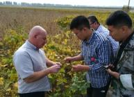 Discussions focused on how to improve soybean cropping in China with less inputs
