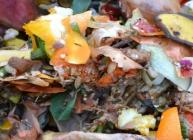 Food waste shows huge potential to replace energy crops