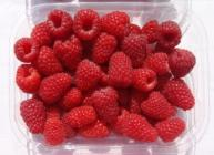 Punnet of Glen Carron raspberries (c) James Hutton Limited
