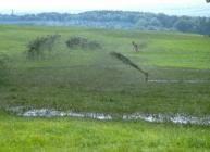 Spreading sludge at the James Hutton Institute's Hartwood Farm