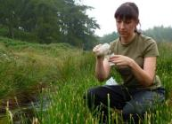 Photograph of Jenni Stockan emptying insect pitfall traps