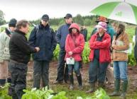 Photograph of visitors in the rain at a field plot during PiP 2011