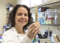 Dr Sarah McKim (image credit: University of Dundee)