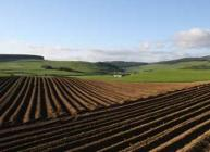 Photograph of ploughed field with hills and forestry in the background