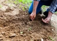 The Rock On Soils project will see scientists and farmers working together