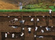 Photography of image showing little scientists examining soil