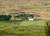 Rural buildings
