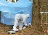 Forensic scientist collecting samples in a forest