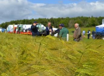 Arable Scotland 2020 is moving to a virtual format