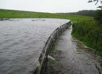 Natural flood defences used on the Belford Burn