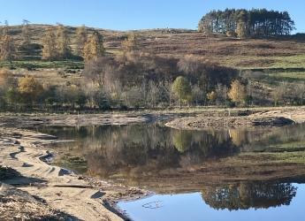 Beltie wetlands (photo: Dee Catchment Partnership)