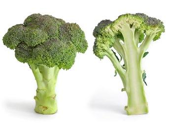 Broccoli © Wikicommons Fir0002/Flagstaffotos