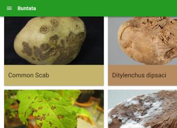 Screenshot of Buntata Web (c) James Hutton Institute