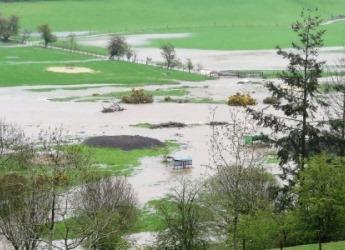 An image of a flooded field