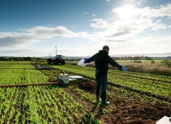 The James Hutton Institute is at the forefront of agricultural research