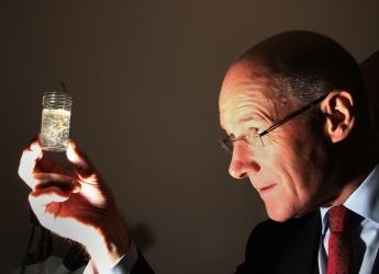 John Swinney MSP looks at see-through soil (c) James Hutton Institute