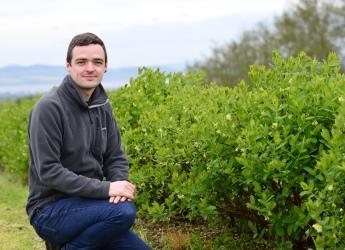 Honeyberries KTP associate Ruari Macleod (c) James Hutton Institute