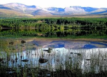 Loch Morlich (c) James Hutton Institute