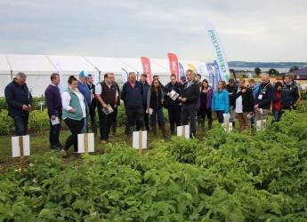 Visitors at Potatoes in Practice 2016 (c) James Hutton Institute