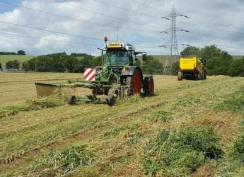 Baling wheat and bean plant team (c) James Hutton Institute