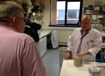Filming took place at our labs and glasshouses (c) James Hutton Institute