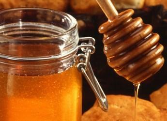 Honey (By Scott Bauer, USDA ARS [Public domain], via Wikimedia Commons)