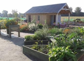 Tarland community garden