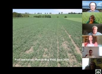 The Virtual Field Day session looked at crop mixtures
