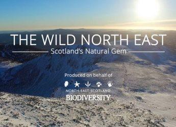 Screenshot of The Wild North East: Scotland's Natural Gem film