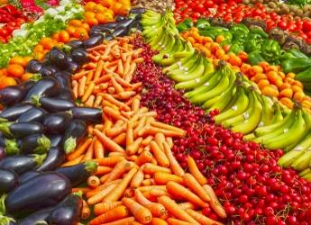 Abundance of vegetables (image: Pixabay)